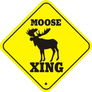 moose_xing_thumb_640